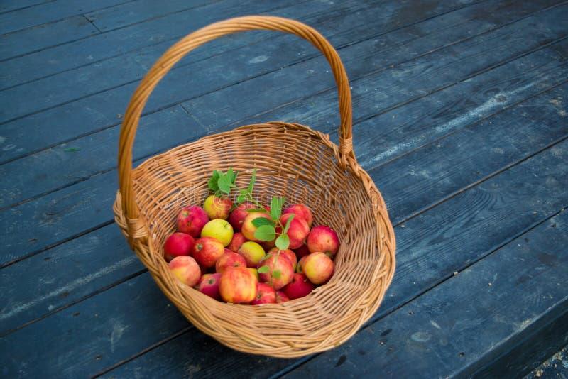 Manzanas en cesta de mimbre foto de archivo