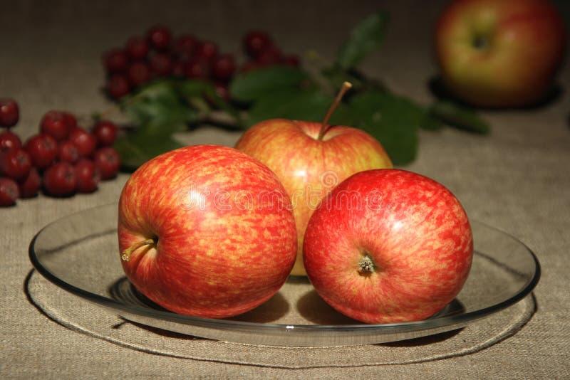 Manzanas en fondo de la materia textil del de-foco. foto de archivo