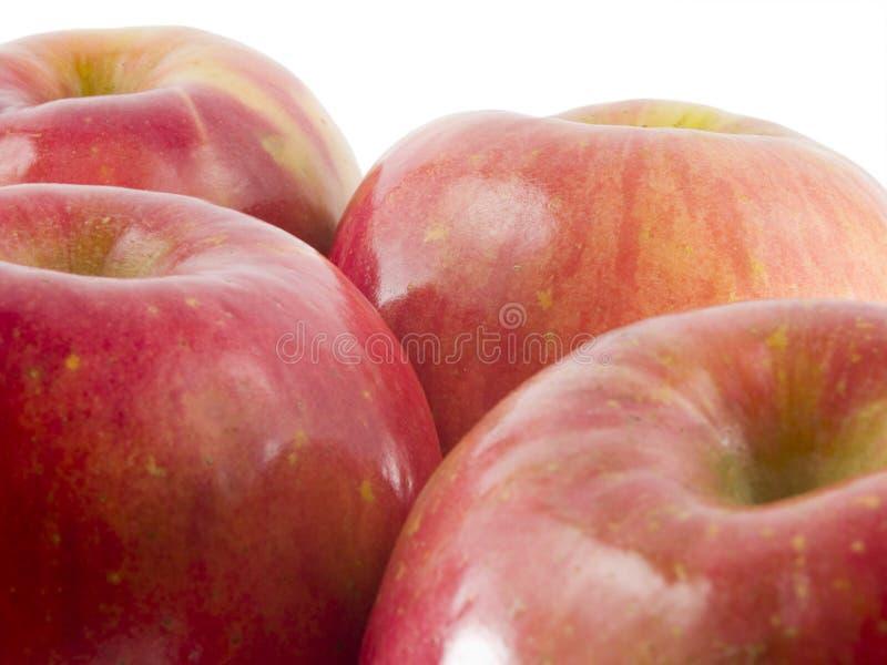 Manzanas frescas de fuji fotos de archivo libres de regalías