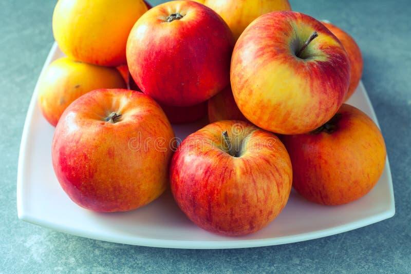 Manzanas frescas en la placa blanca imagenes de archivo