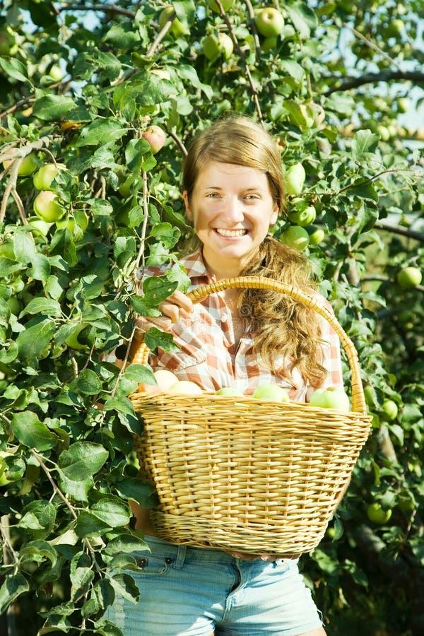 Manzanas jovenes de la cosecha de la muchacha de granja imágenes de archivo libres de regalías