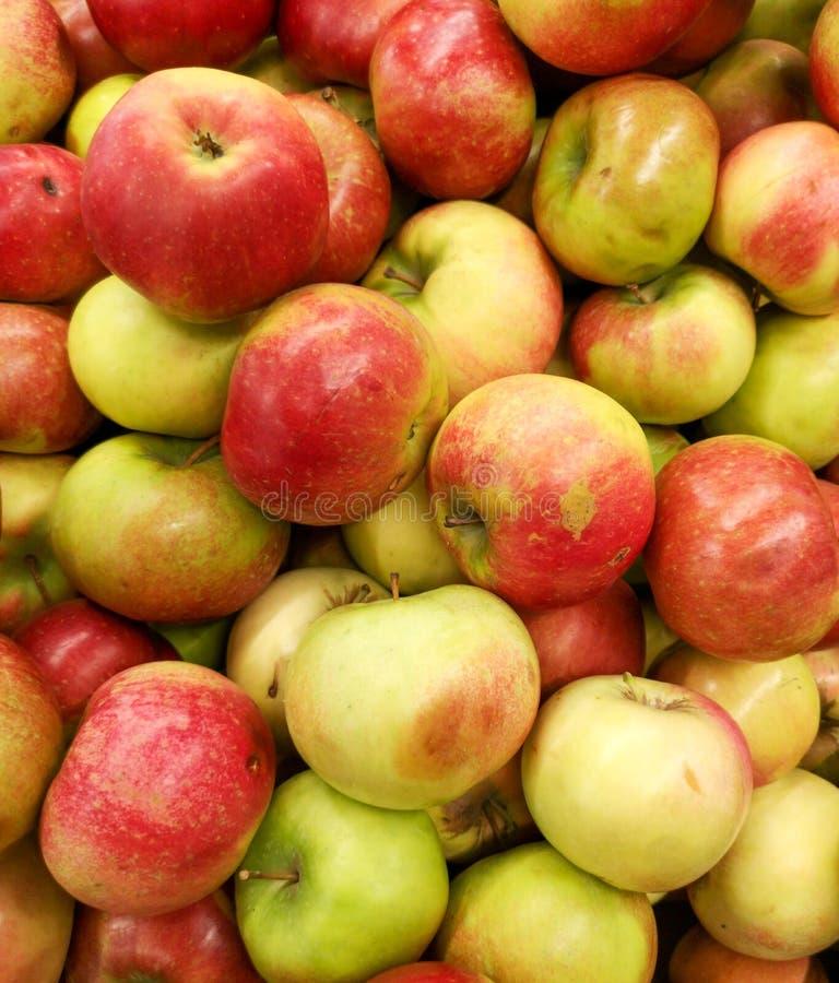 Manzanas maduras en la tienda como fondo fotografía de archivo libre de regalías