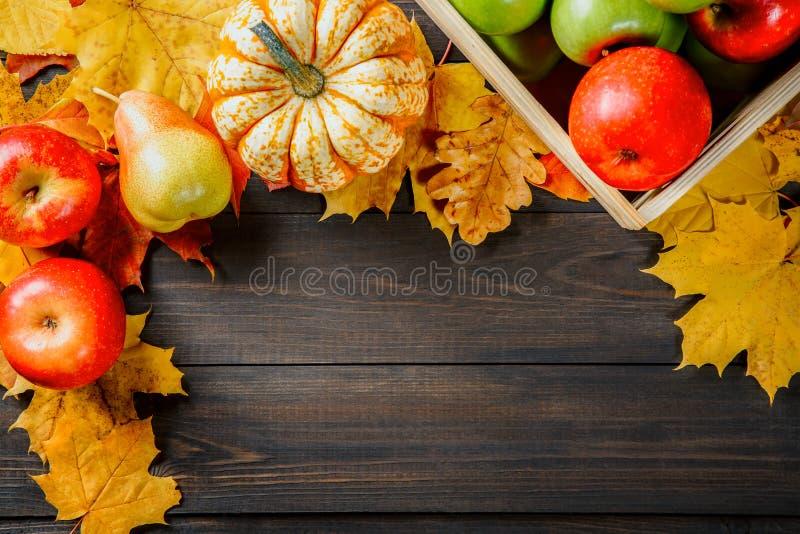 Manzanas maduras en una caja con las calabazas, manzanas y peras cerca de las hojas de otoño en fondo de madera oscuro Imagen est imágenes de archivo libres de regalías