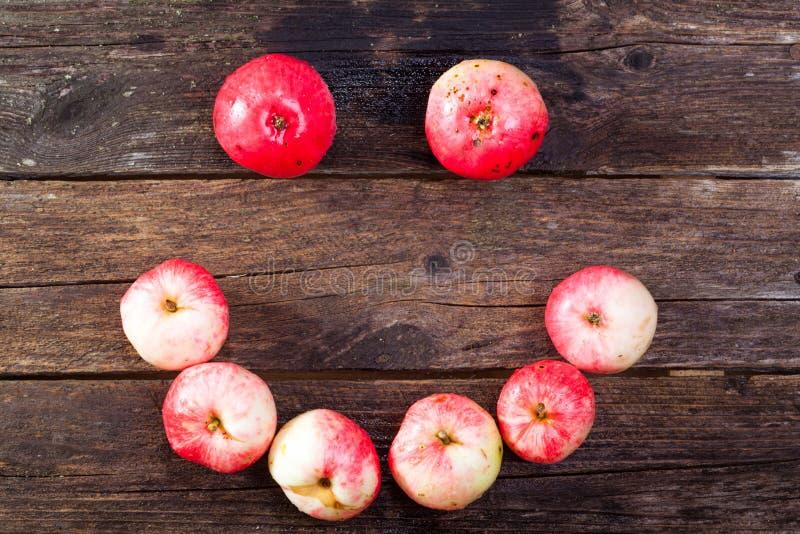 Manzanas maduras rojas foto de archivo libre de regalías