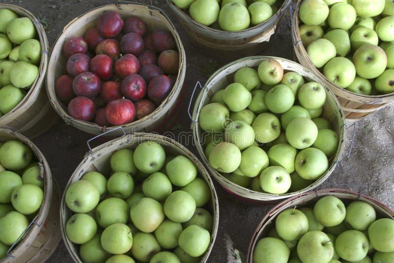 Manzanas a montones fotografía de archivo libre de regalías