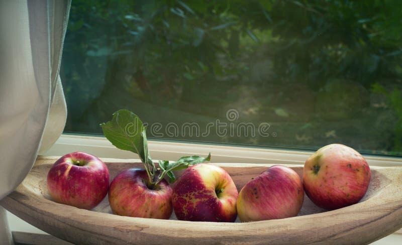 Manzanas orgánicas de la caída en un cuenco en travesaño de la ventana con la luz natural que viene de área del patio trasero arr fotografía de archivo libre de regalías