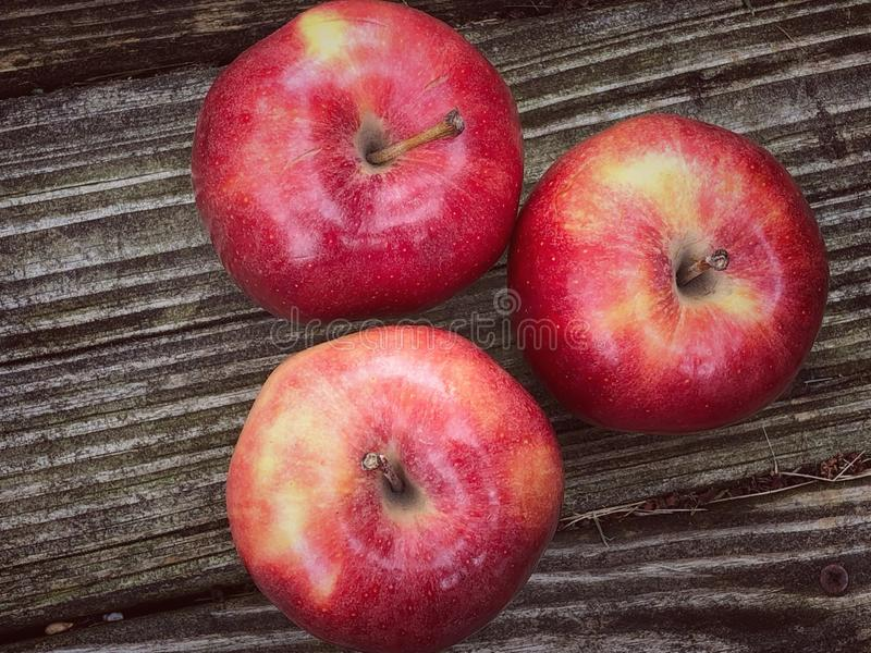 Manzanas red delicious fotos de archivo libres de regalías