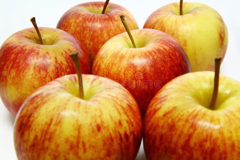 Manzanas rojas fotos de archivo