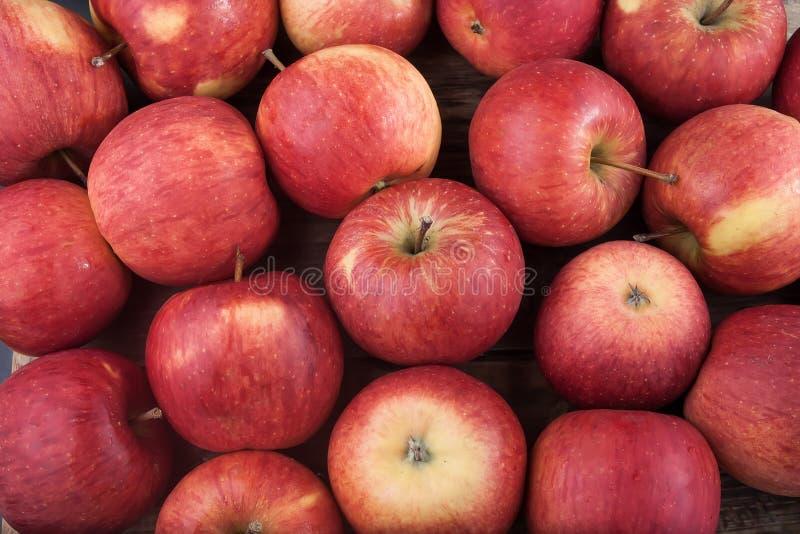 Manzanas rojas imagen de archivo libre de regalías
