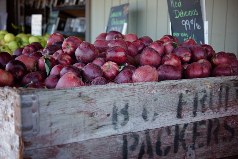 Manzanas rojas en el mercado foto de archivo