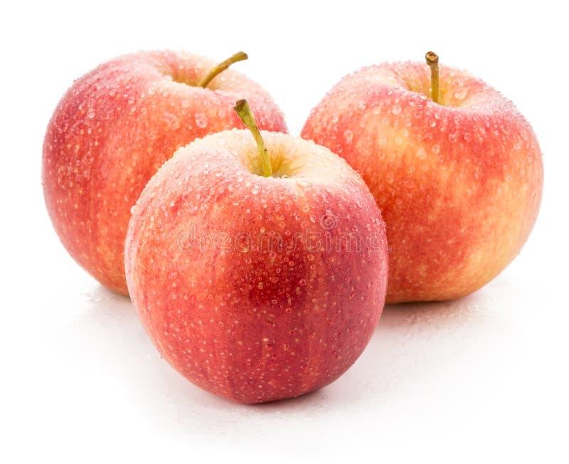 Manzanas rojas frescas aisladas en el fondo blanco fotografía de archivo
