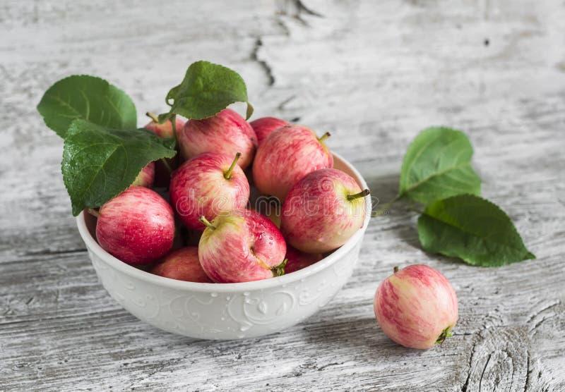 Manzanas rojas frescas en un cuenco blanco fotografía de archivo libre de regalías