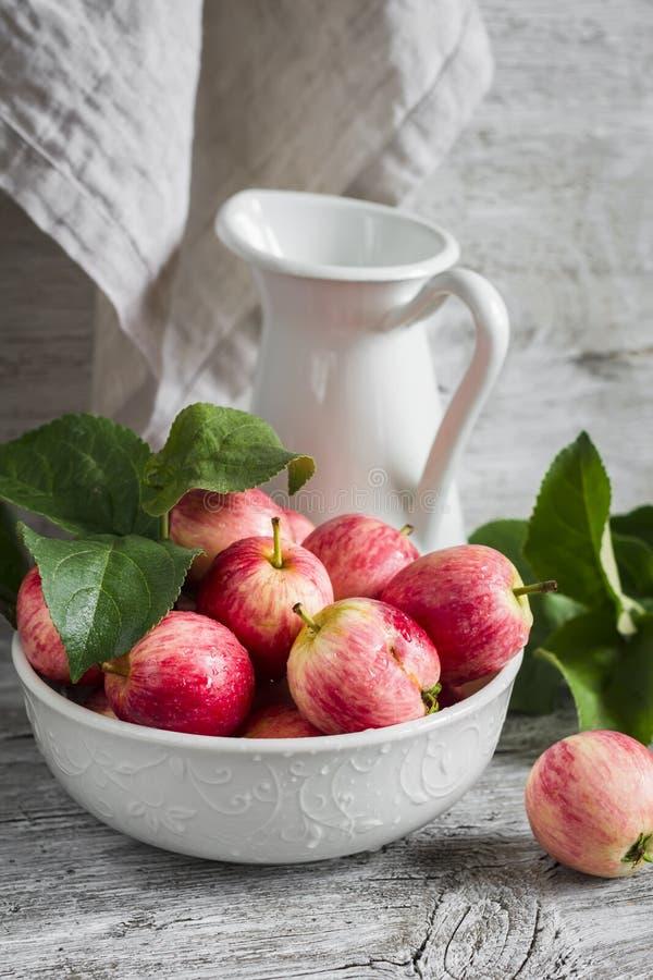 Manzanas rojas frescas en un cuenco blanco y una jarra esmaltada fotos de archivo