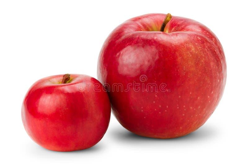 Manzanas rojas grandes y pequeñas en blanco foto de archivo