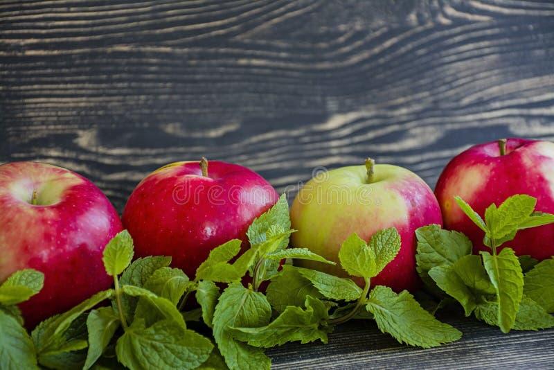 Manzanas rojas maduras con la menta Vista lateral Espacio para el texto Fondo de madera oscuro fotos de archivo libres de regalías