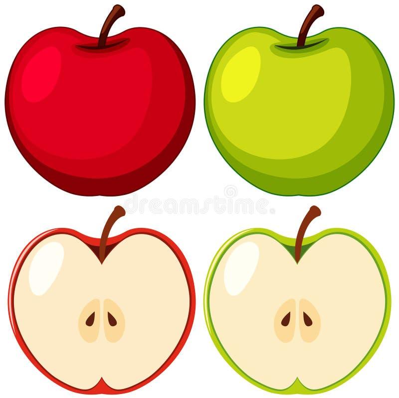 Manzanas rojas y verdes en el fondo blanco stock de ilustración