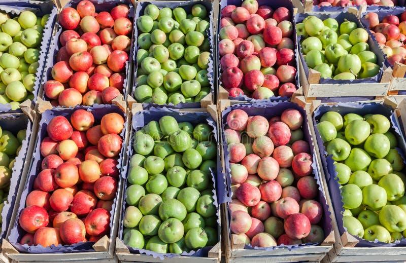Download Manzanas Rojas Y Verdes Frescas Para La Venta Foto de archivo - Imagen de muchos, fresco: 44853814