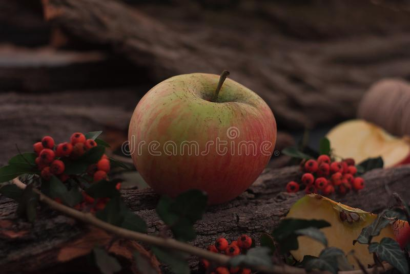 Manzanas sabrosas maduras en la tabla de madera imágenes de archivo libres de regalías