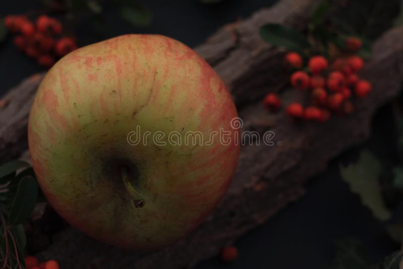 Manzanas sabrosas maduras en la tabla de madera imagenes de archivo
