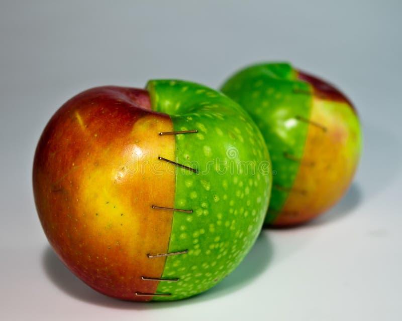 Manzanas sujetadas con grapa fotografía de archivo libre de regalías