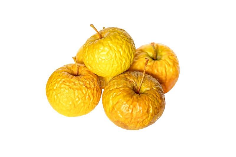 Manzanas viejas amarillas arrugadas aisladas en blanco imagen de archivo libre de regalías