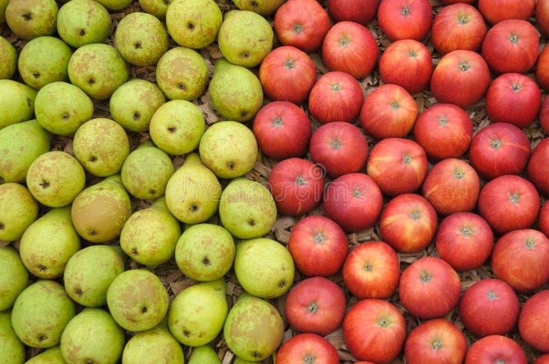 Manzanas y peras imagen de archivo