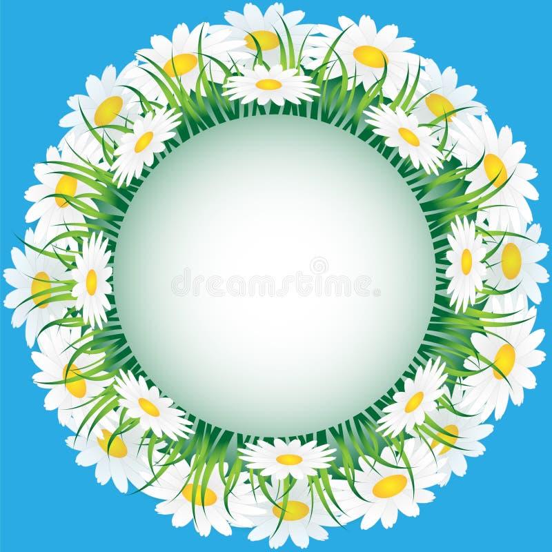 Manzanilla e hierba ilustración del vector