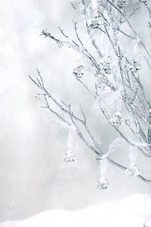Manzanita mit Weinlesekristallen und -schnee lizenzfreies stockfoto