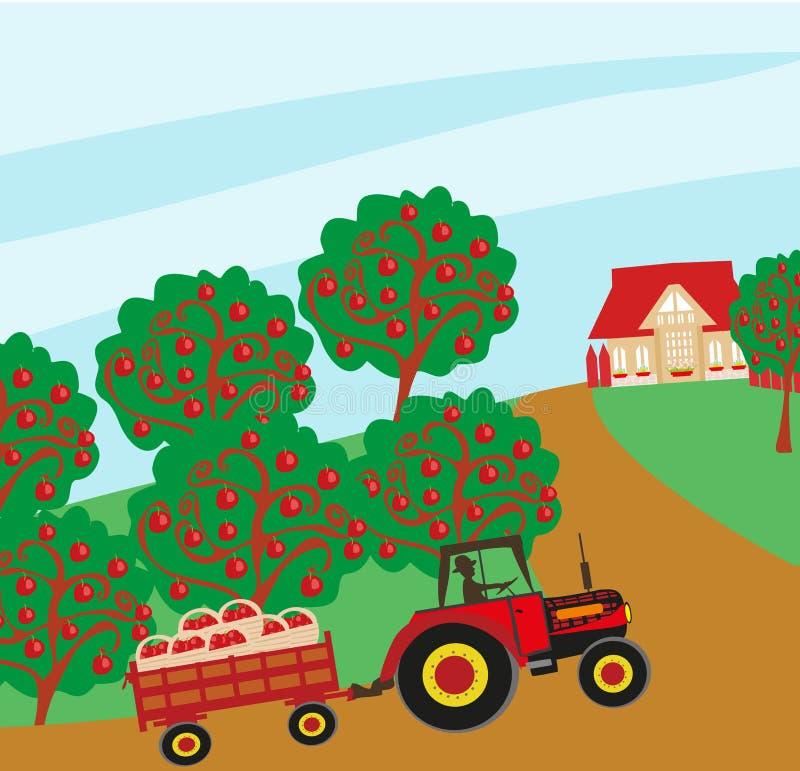 manzanos y hombre que conducen un tractor stock de ilustración