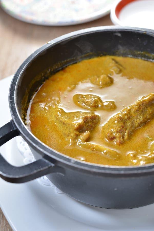 Manzo del curry dello stufato di castrato fotografia stock libera da diritti