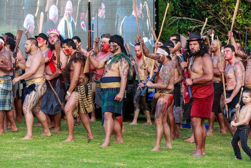 Maori πρόκληση Τα άτομα έντυσαν ως πολεμιστές, Tauranga, Νέα Ζηλανδία στοκ εικόνες