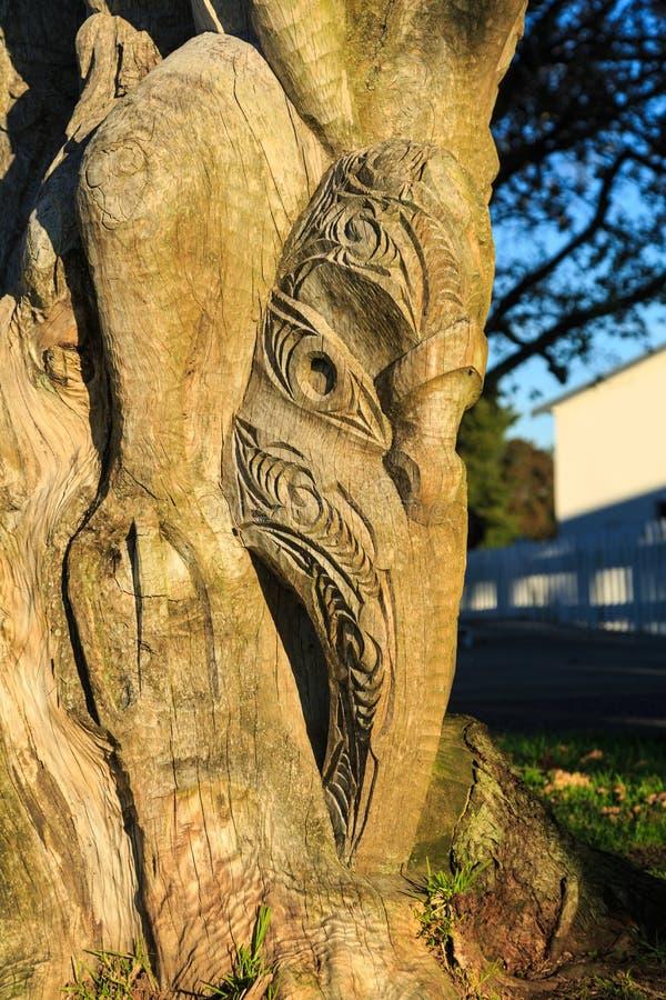 Maori Art Gestileerd die gezicht in boomboomstam wordt gesneden Tauranga, Nieuw Zeeland stock afbeelding