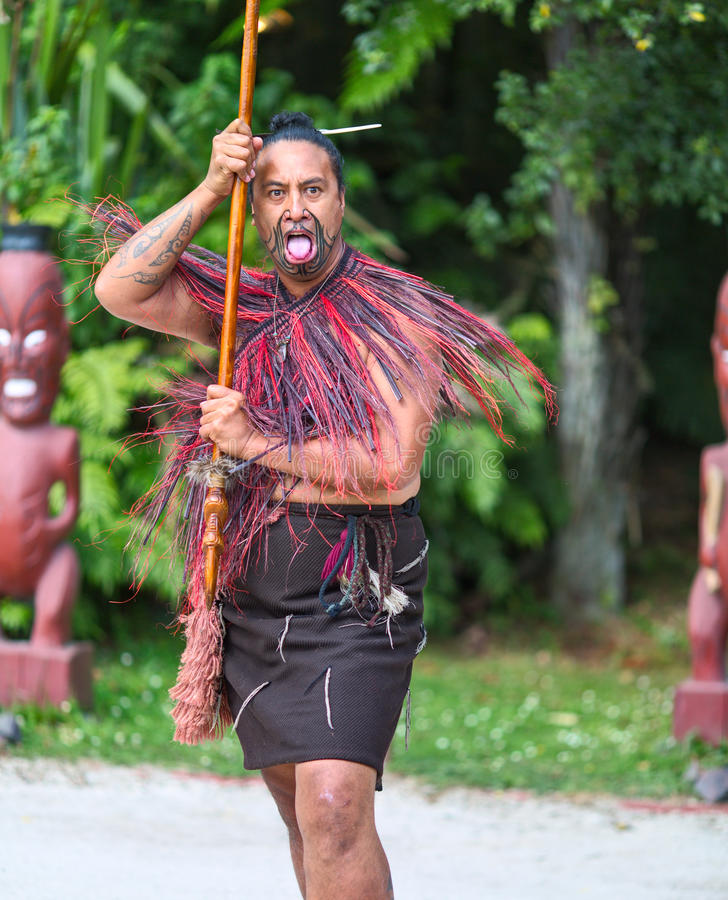 Maori Tribes Traditional Greeting Show. New Zealand ...