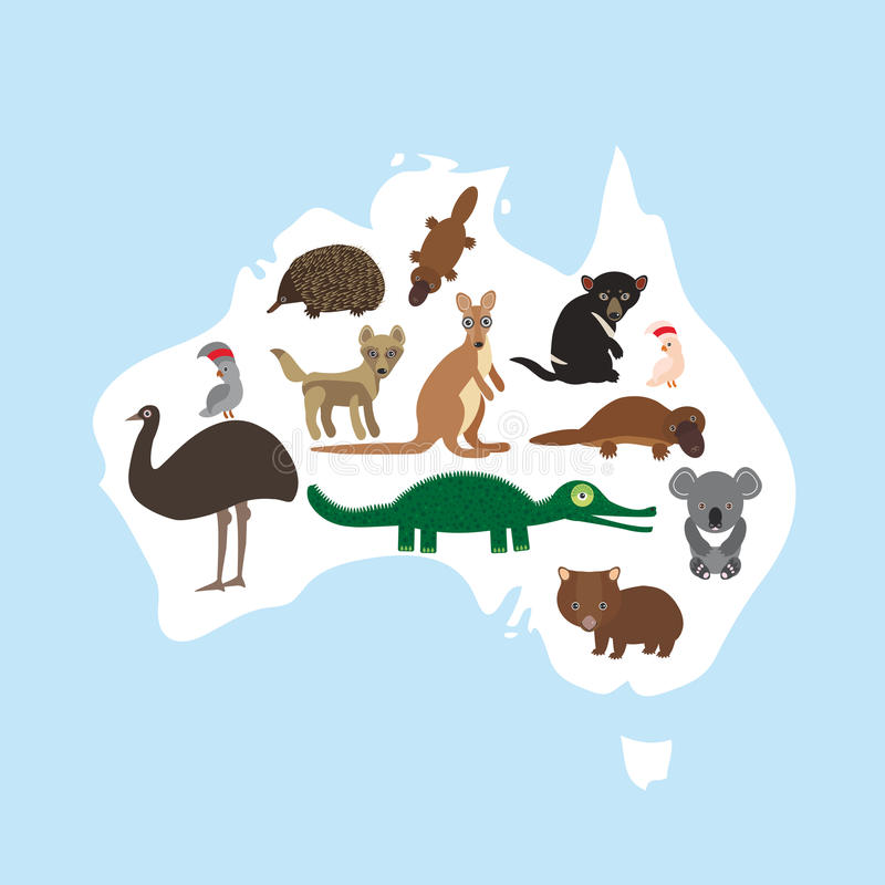Map of Australia. Echidna Platypus ostrich Emu Tasmanian devil Cockatoo parrot Wombat crocodile kangaroo dingo. Vector vector illustration