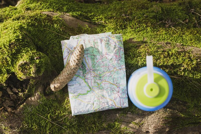 Map and pine cone royalty free stock photography