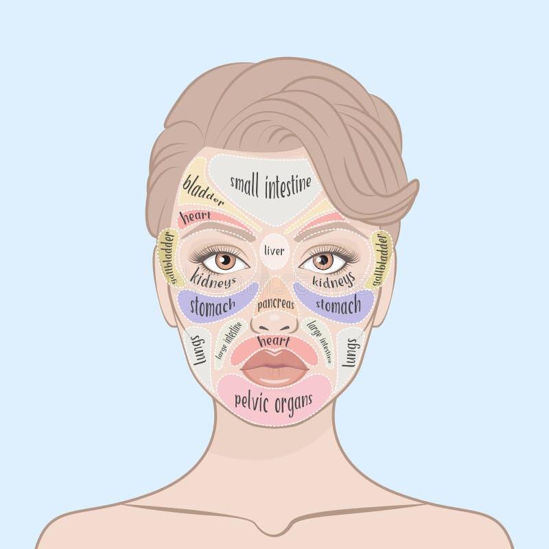 Mapa da cara da acne ilustração do vetor