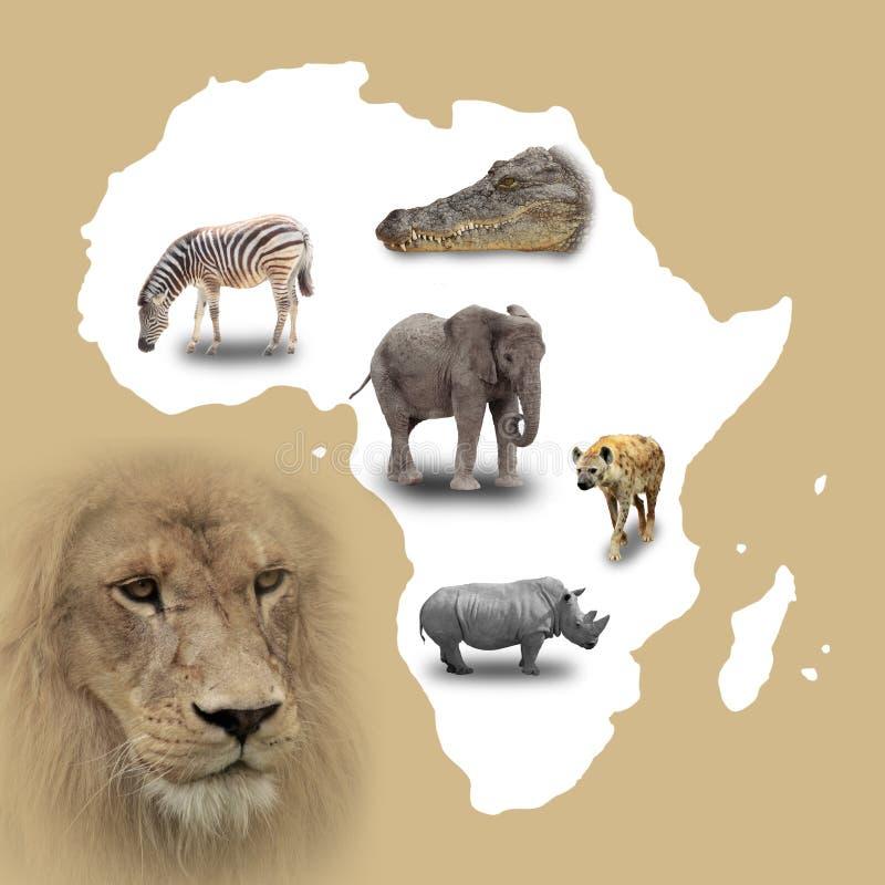 Mapa de África ilustração royalty free