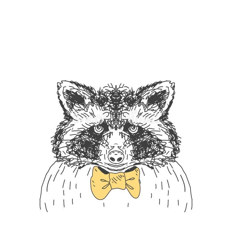 Mapache salvaje dibujado mano de los ciervos del bosque libre illustration
