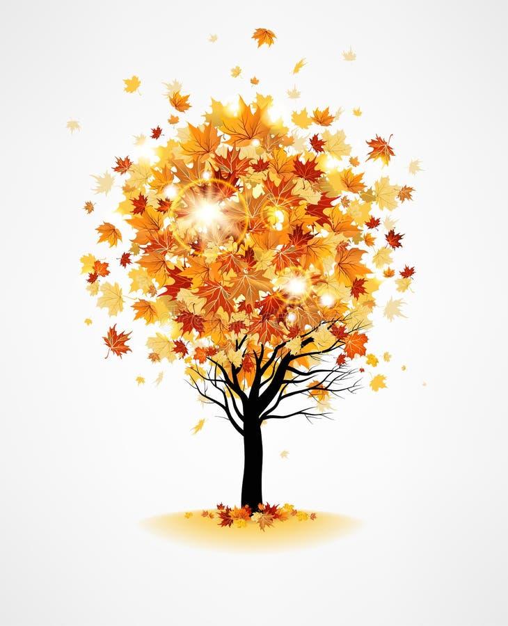 Maple autumn tree vector illustration