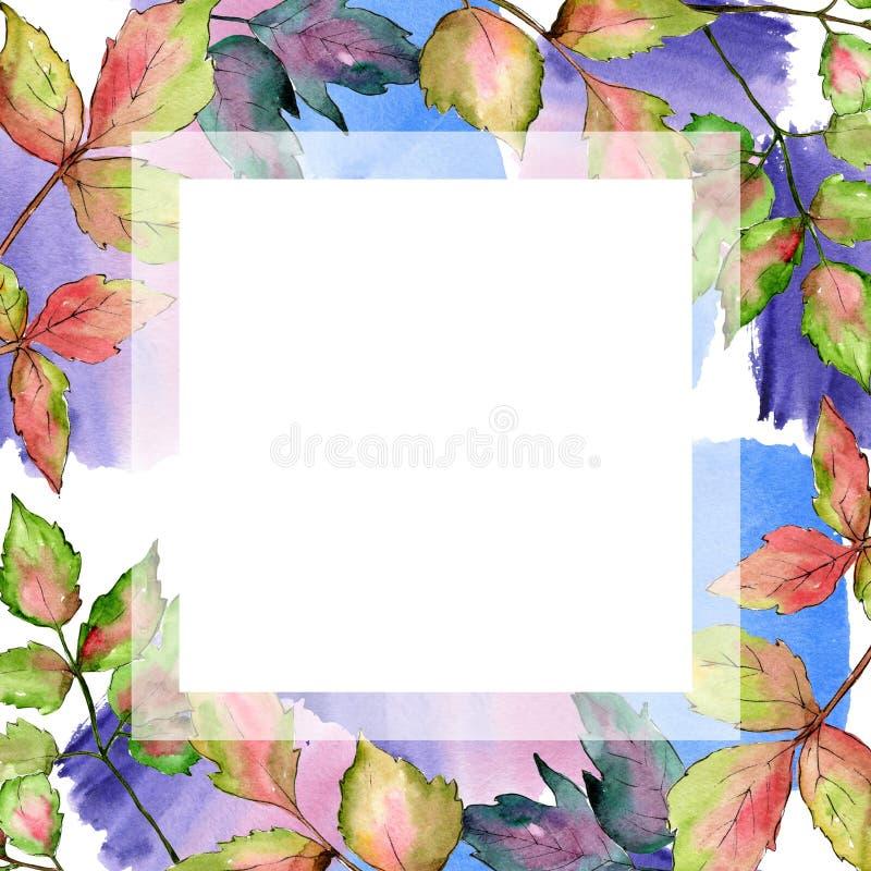Maple colorful leaves. Leaf plant botanical garden floral foliage. Frame border ornament square. vector illustration