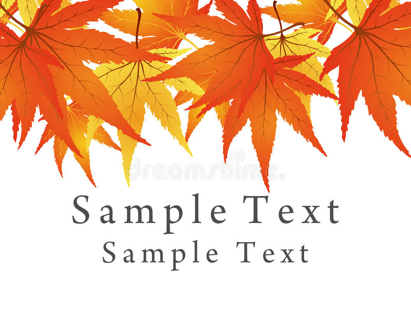 Maple frame royalty free illustration
