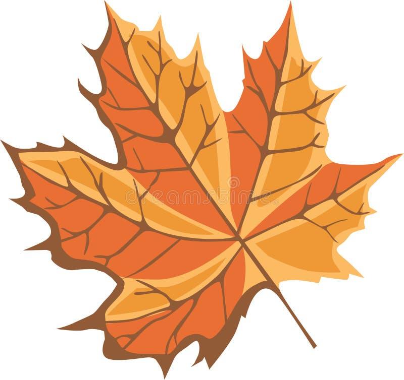 Free Maple Leaf Royalty Free Stock Image - 17721056