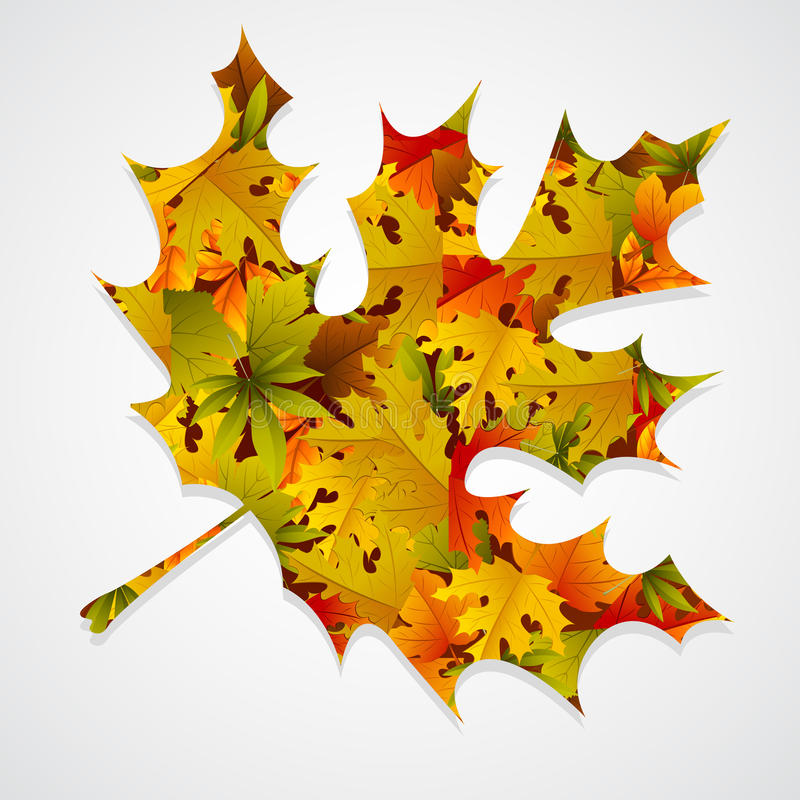 Download Maple Leaf Background stock vector. Image of natural - 23889536