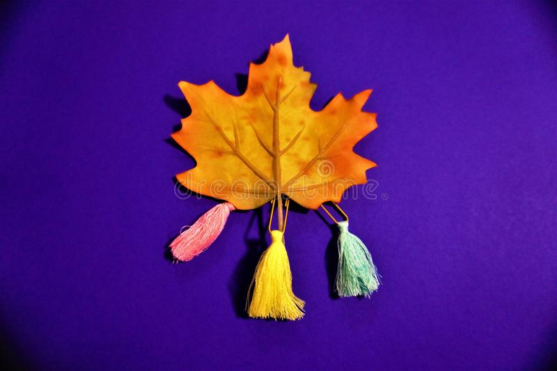 Maple Leaf With Colourful Tassels  royalty free stock photo