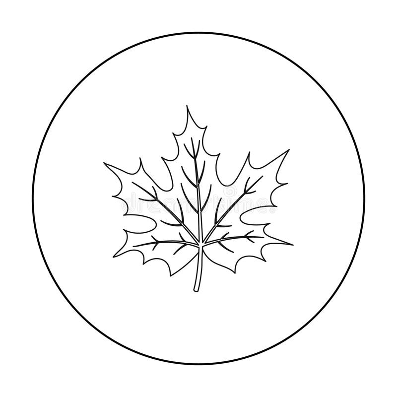 Maple leaf icon in outline style isolated on white background. Canadian Thanksgiving Day symbol stock vector. Maple leaf icon in outline style isolated on white vector illustration