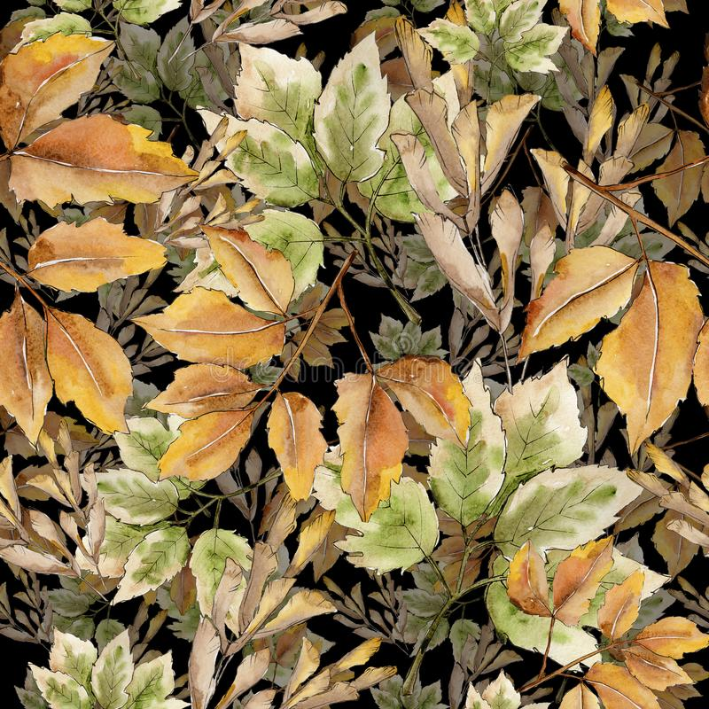 Maple leaf. Leaf plant botanical garden floral foliage. Seamless background pattern. Fabric wallpaper print texture. Maple leaves in a watercolor style stock photos