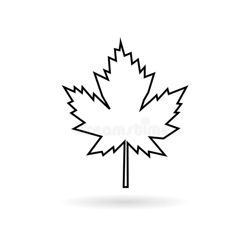 Maple Leaf line icon. On white background royalty free illustration