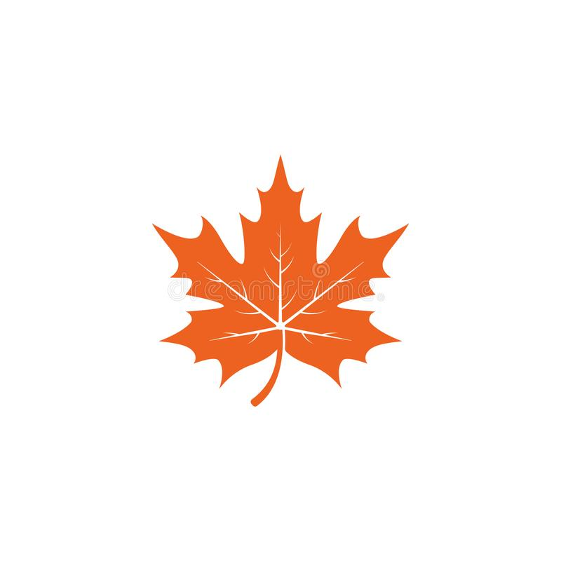 Maple leaf logo template vector icon illustration. In flat design, canada, canadian, white, isolated, nature, art, tree, background, symbol, element, red, color royalty free illustration
