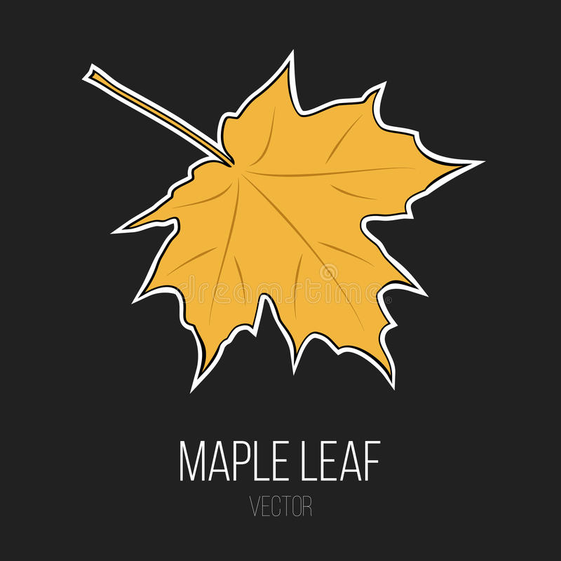 Maple Leaf Vector Isolated Element royalty free stock photos