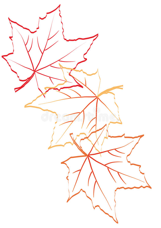 Download Maple leaves stock vector. Image of vector, pattern, october - 11011097